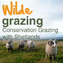 Conservation Grazing